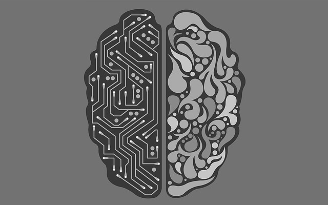 AI vs Human Brain
